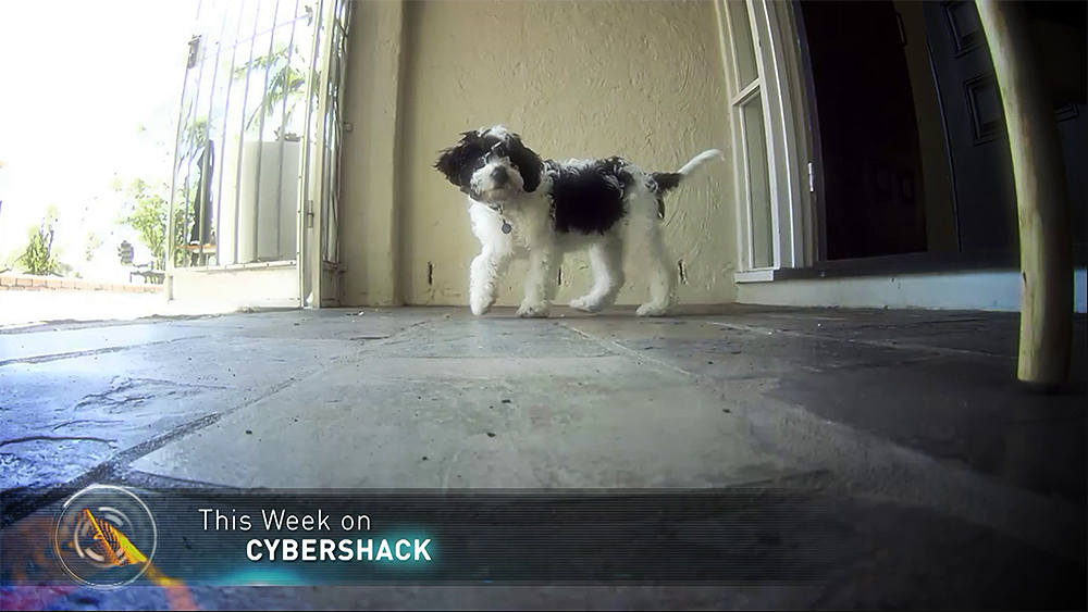CyberShack TV Season 24- Episode 12 Sneak Peek!