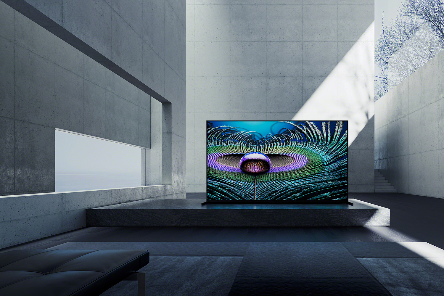Sony's new TV lineup claims to see like a human